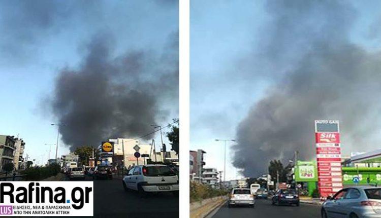 Υπό έλεγχο τέθηκε σε σύντομο χρονικό διάστημα πυρκαγιά που ξέσπασε νωρίς το απόγευμα σε υπαίθριο χώρο στον Γέρακα και συγκεκριμένα στην οδό Κ. Καβάφη.
