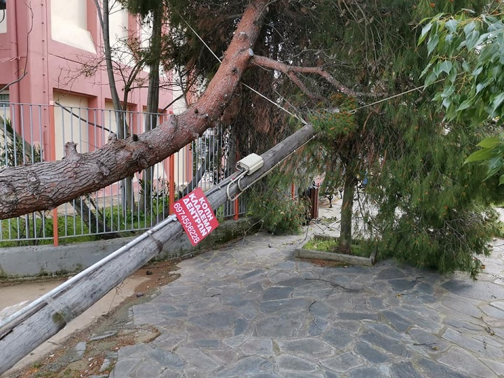 Επί ποδός είναι η Πολιτική Προστασία και η Υπηρεσία Πρασίνου του Δήμου Βριλησσίων αφού ο πολύ δυνατός αέρας έριξε τρία δέντρα μέσα σε χρονικό διάστημα τριών περίπου ωρών.