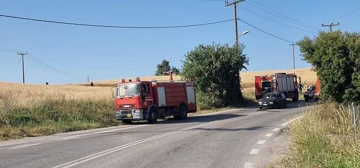 Δυο πυρκαγιές σε δασική έκταση εκδηλώθηκαν χθες Δευτέρα 24-05-2021 και κατά τις ώρες 17.20 και 18.25 στον Άγιο Στέφανο και στην Ιπποκράτειο Πολιτεία αντίστοιχα.