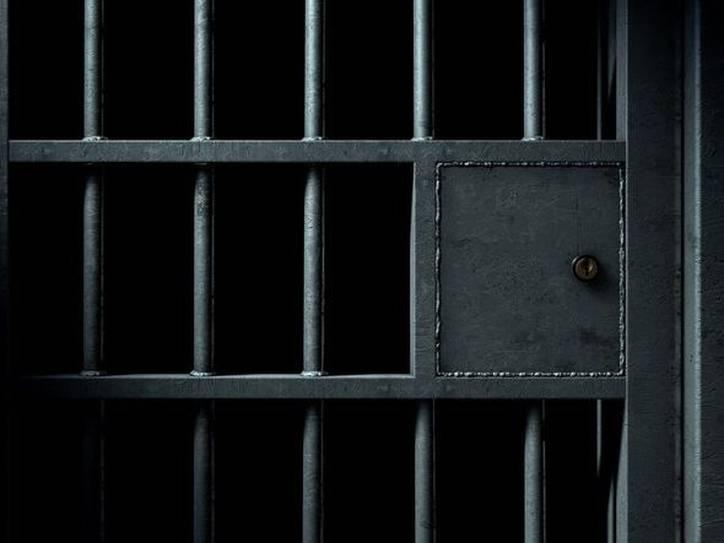 Καταγράφηκε ηπρώτη προφυλάκιση για ζωοκτονίαστην Ελλάδα, καθώς ένας 23χρονος στην Πάτρα οδηγήθηκε στη φυλακή γιαθανάτωση γάτας.